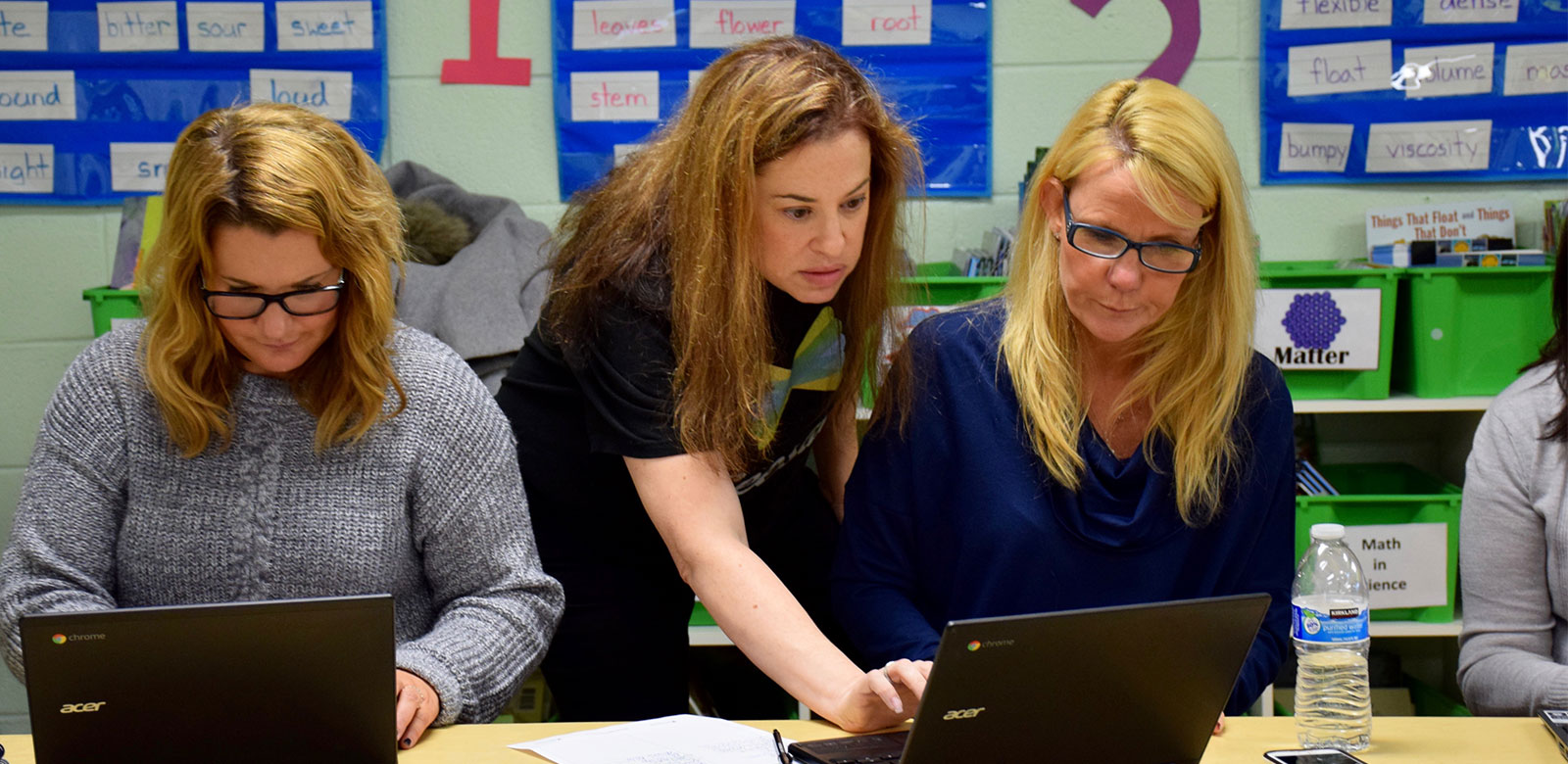 Diverse Learning Experiences for Teachers in Elwood photo