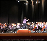 EMS Orchestra Receives Superior Rating photo